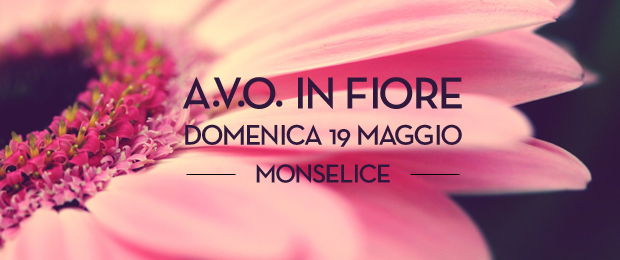 Avo-in-fiore-monselice